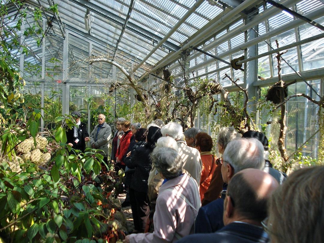 Le jardin botanique en images les rendez vous des 55 ans for Camping le jardin botanique limeray